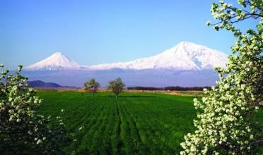 kurs armenische dram euro